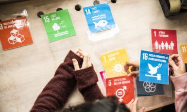 FN's 17 verdensmål